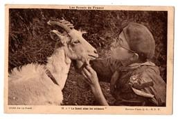 """SCOUTISME . LES SCOUTS DE FRANCE . """" LE SCOUT AIME LES ANIMAUX """"  - Réf. N°482 - - Scoutisme"""
