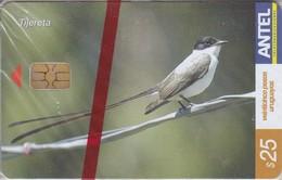 Nº 325 TARJETA DE URUGUAY DE LA TIJERETA (PAJARO-BIRD)  (NUEVA-MINT)