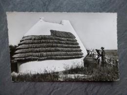 13 En Camargue, Cabane De Gardians, CP Années 50  ; Ref  006 - Francia