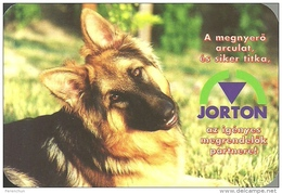 DOG * DOGGIE * GERMAN SHEPHERD * ANIMAL * PRESS OFFICE * PRINTING HOUSE * CALENDAR * Jorton 1999 * Hungary - Calendriers