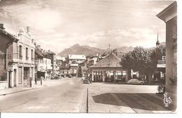 La ROCHE Sur FORON ( 74 Haute Savoie ) - La Place Grenette - Pointes D'Andey Et Du Jallouvre - La Roche-sur-Foron