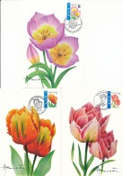 3 Cartes Maximum André Buzin - Tulipes - Maximum Cards