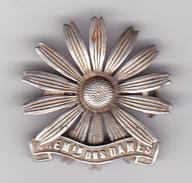 INSIGNE : RARE - CHEMIN DES DAMES - WW1 1914-1918 - Aisne, Laon, Soissons, Reims - 2 Scan - Army