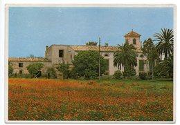 Espagne--1983--CASA DE CAMPO--cpm  Eduardo Miralles.....cachet  PALMA - Espagne