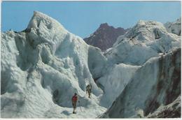 CPSM :  Cordée Dans Le Glacier Des Bossons En 1964.       (c 361n) - Escalade