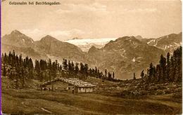 DE-BY: BERCHTESGADEN: Gotzenalm - Berchtesgaden
