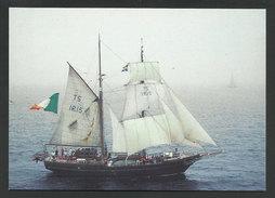 Bateau à Voile Asgard II Irlande Carte Postale Regate Vasco Da Gama Portugal 1998 Sailing Ship Ireland Postcard - Piroscafi