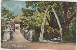 GIBRALTAR - WHALE JAW'S ARCH - Gibraltar