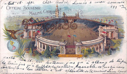 Official Souvenir Mailing Card - The Stadium - 1901 Pan - Amercian Exposition Expo - Buffalo