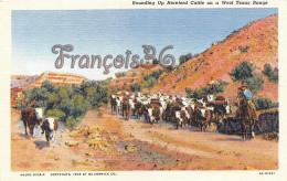 Rounding Up Hereford Cattle On A West Texas Range - Etats-Unis