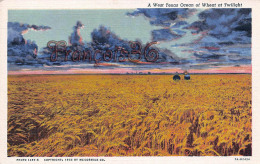 A West Texas Ocean Of Wheat On Twilight - Etats-Unis