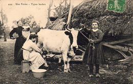 D40  Une Ferme Types Landais ( Carte Postée D'Houeilles D47 ) - France