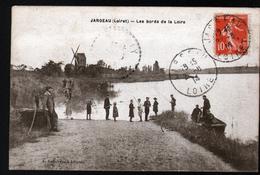 45, JARGEAU, LES BORDS DE LA LOIRE - Jargeau