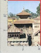 CARTOLINA NV NEPAL - Lord Pasupatinath Temple - 10 X 15 - Nepal
