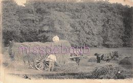 58 - La Fanaison - Foin - Paysans - Attelage - Dos Vierge Precurseur   - 1903 - 2 Scans - Non Classés