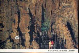 20264 Japan,circuled Stationery Card 1985, Grottes,caves,hohlen,speleology Speleologie