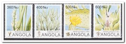 Angola 1993, Postfris MNH, Plants - Angola