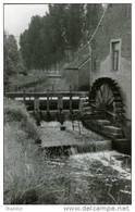 HERNE (Vlaams-Brabant) - Molen/moulin - Historische Opname Van De Boesmolen Op De Marke (voor De Verbouwing) - Herne