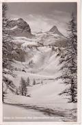 AK Winter Im Steinernen Meer - Schottmalhorn Und Schönfeldspitze - 1954 (28051) - Berchtesgaden