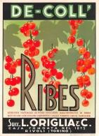 """06726 """"RIBES - SCIROPPO NATURALE - DE-COLL' - SUCC. L. ORIGLIA & C. - RIVOLI (TORINO)""""  ETICH. ORIG. - Etichette"""