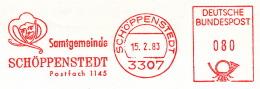 Freistempel 0453 Schöppenstedt Eulenspiegel - Poststempel - Freistempel