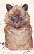 Belle CPA Illustrateur Signé Louis WAIN  Superbe CHAT THE BULLY  Timbre 1905  Scan Dos - Gatti