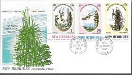 1969 NOUVELLES HEBRIDES  PREMIER JOUR  PENTECOST ISLAND - FDC