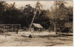 GUYANNE - CARTE PHOTO  KODAK - Guyane