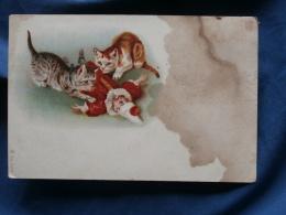 """Illustration  Deux Chats Jouant Avec Un Pantin """"Pierrot"""" - Précurseur -N° 6509 - Circulée 1903- R141 - Cats"""