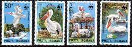 ROUMANIE WWF. Pelicans. Yvert N° 3543/46 ** Neuf Sans Charniere. MNH. - W.W.F.