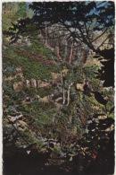974 - REUNION - ILE BOURBON -  SAINT BENOIT - CASCADES DE TAKAMAKA - Saint Benoît