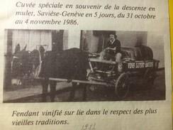 3801 - Fendant Du Saviesan Cuvée Spéciale Pour La Descente En Mulet Savièse-Genève En 5 Jours 1986 Vins Luyet - Etiquettes