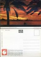 Ak Spanien - Puerto De La Luz - Las Palmas De Gran Canaria - Sonnenuntergang - Schiff - Palmen - La Palma