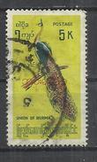 MYANMAR 1968 - GREEN PEAFOWL (PAVO MUTICUS) - USED OBLITERE GESTEMPELT USADO - Paons