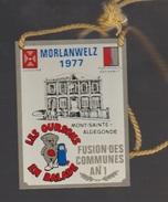 Morlanwelz 1977 - Militaria