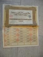 Tabacs D'Orient Et D'Outre-Mer - Action De 100 Francs Au Porteur 1928 - Agriculture