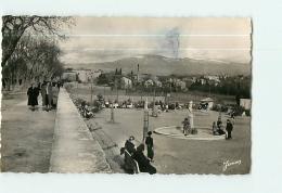 CARPENTRAS : Le Jardin D'Enfants Et Le Mont Ventoux. 2 Scans. Edition Meyer, Junon, Format CPA - Carpentras