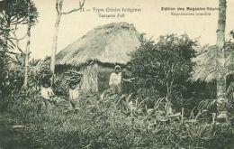 Mauritius, Tamarin Fall, Native Types Creoles, Bananas (1910s) - Mauritius
