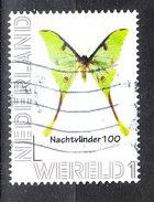Olanda   Nederland  -   2016. Farfalla Notturna. Nocturnal Butterfly - Papillons