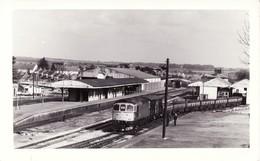 Railway Photo BR Class 33 33021 Andover 1984 Crompton Diesel Loco - Trains