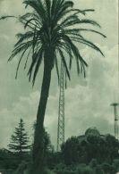 Vatican City, Giardini Vaticani, Vatican Radio Masts And Towers (1952) - Vatican