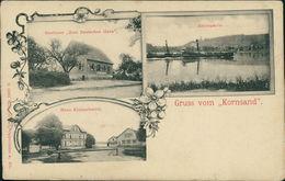 AK Trebur, Kornsand, Gasthaus Zum Deutschen Haus, Haus Kleinschmidt, Rheinpartie, Um 1919, Ecken Rund (23118) - Ruedesheim A. Rh.