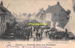 CPA TORHOUT THOUROUT  HAANHOEK TIJDENS EENE PEERDENFEEST - Torhout
