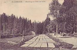 88 En Lorraine - Blanchissage De Toiles Sur Le Pré - Other Municipalities