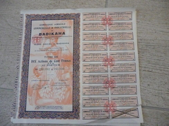 Compagnie Agricole Commerciale Et Industrielle De Badikaha - 10x100 F 1927 Grand Bassam - Afrique