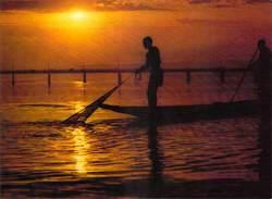 Afrique- MALI  BAMAKO Pêcheurs à L'épervier Sur Le Niger (pêche  Fisherman ) (cliché J.C NOURAULT M27)*PRIX FIXE - Mali