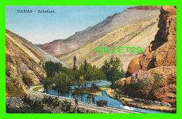 DAMAS, SYRIE - ZABEDANI - ANIMÉE - SARRAFIAN BROS - - Syrie
