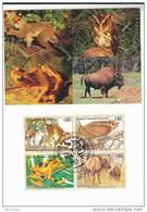 FDC  (maximum Card)  LEMUR, OWL  FROG Stamps UN Geneve United Nations , Stamps, Birds Bird Un Cover - Owls