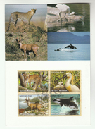 UN Geneve FDC Maximum Card  WHALES LEOPARD BIRD  Stamps United Nations Nature Conservation Cover Whale
