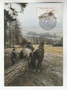 UN Vienna  FDC (maximum Card  HORSES PULLING LOG,  UN ANNIV Stamps Cover United Nations Horses Tree